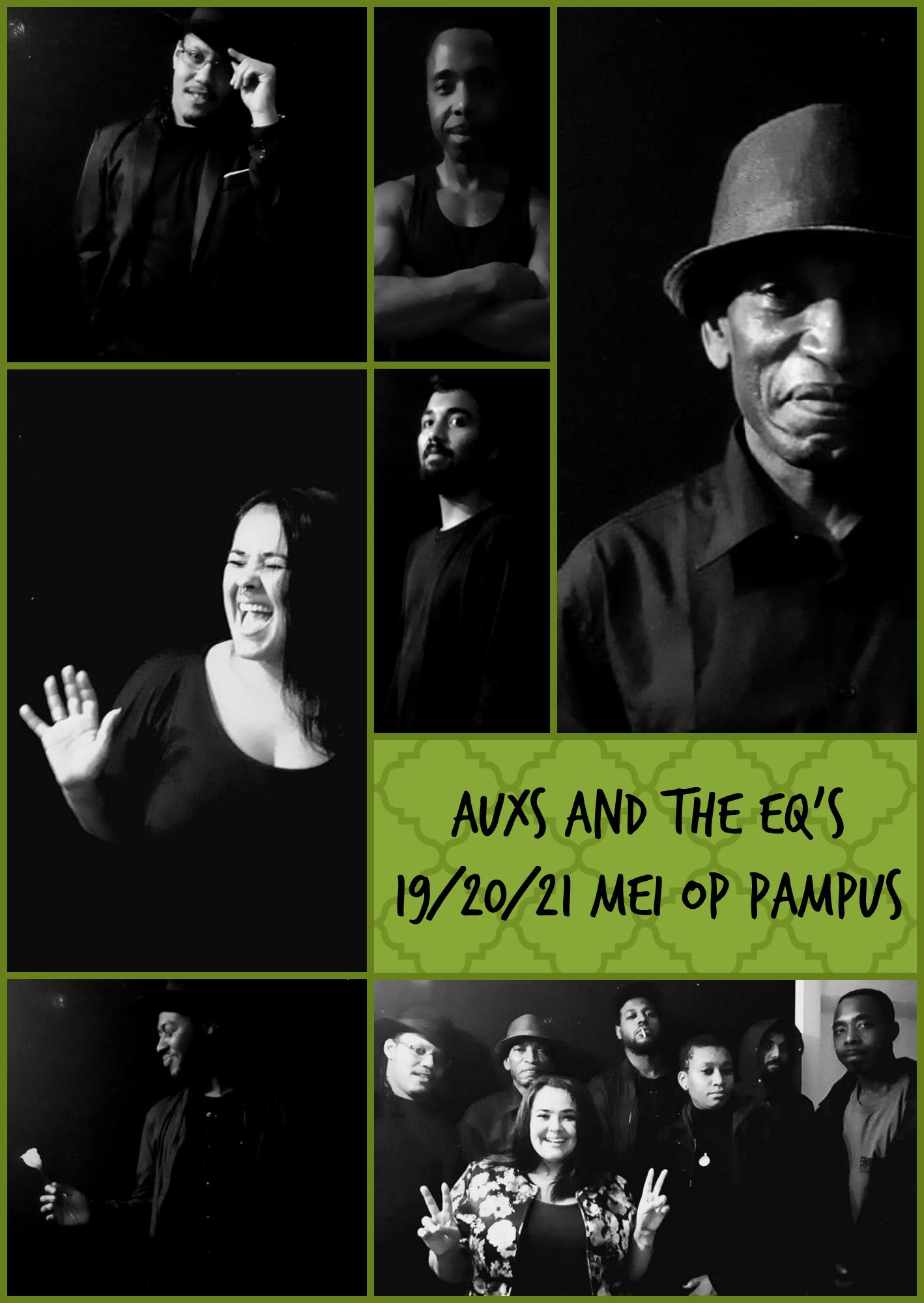 Auxs and the EQs komen drie dagen optreden op Proef Pampus!