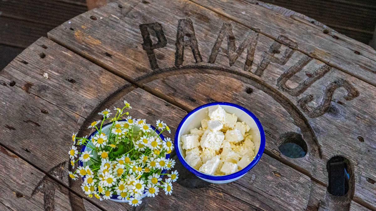 Eindeloos Pampus - tafelblad met Pampus