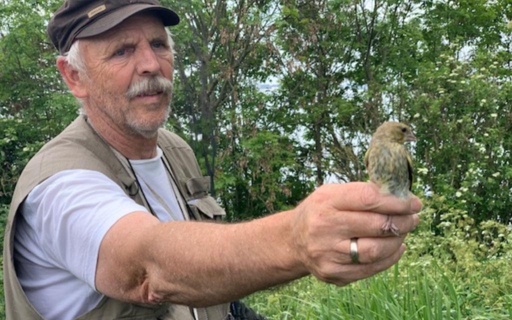 vogels en vogelaars op forteiland pampus